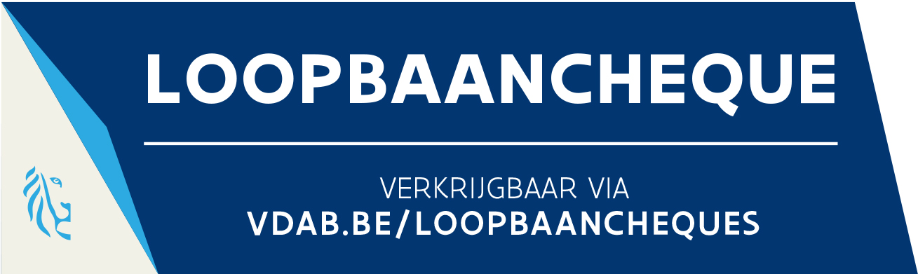 loopbaancheques loopbaanbegeleiding loopbaancoach oplossingsgericht Turnhout